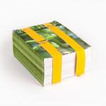Aktengurt-gelb, Baumwollgurt